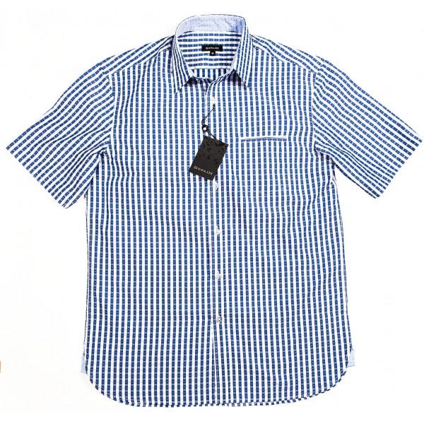 Blue Patterned Stripe on White